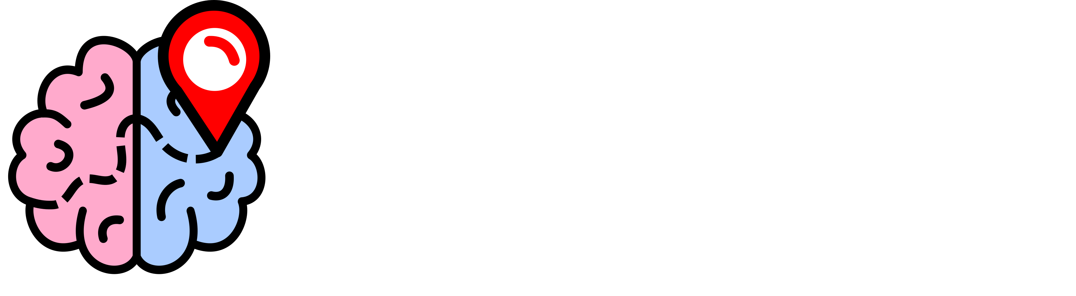 The Journey of a Wandering Mind